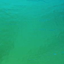 magenta green on thin black dichroic glass