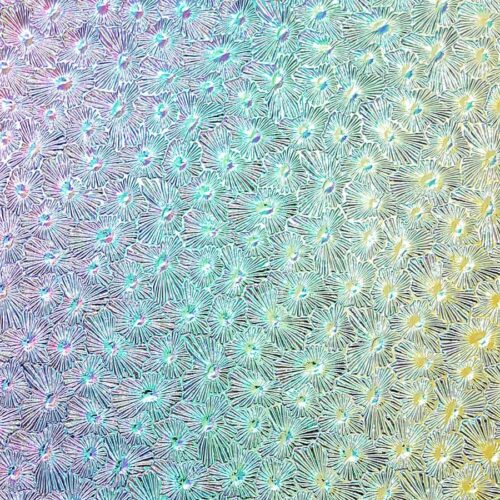 rainbow pastel glass with flower pattern